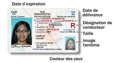 翻译公司为您展示法语驾照翻译